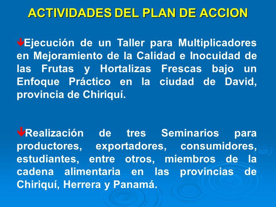 ACTIVIDADES DEL PLAN DE ACCION