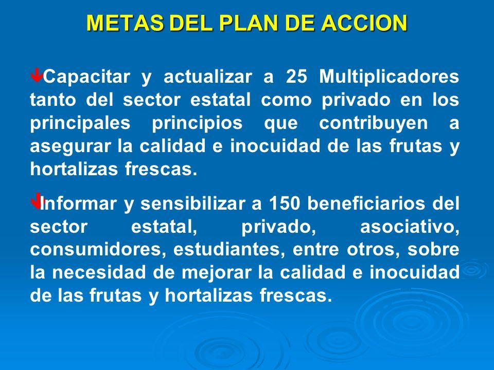 METAS DEL PLAN DE ACCION