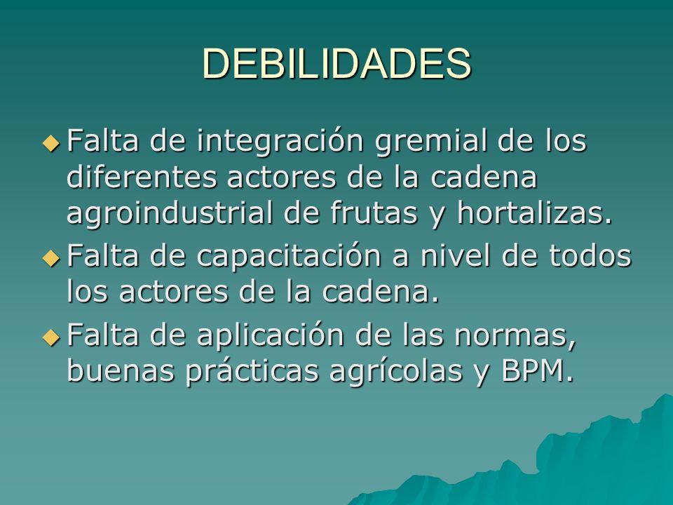 DEBILIDADES Falta de integración gremial de los diferentes actores de la cadena agroindustrial de frutas y hortalizas.