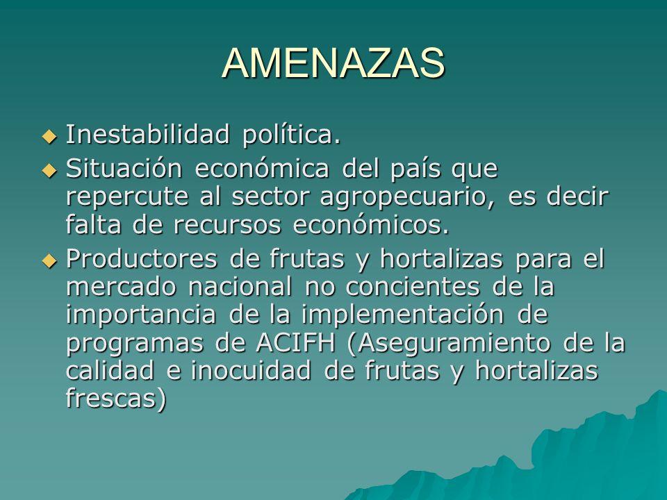 AMENAZAS Inestabilidad política.