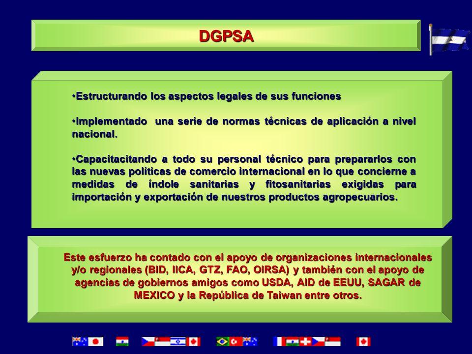 DGPSA Estructurando los aspectos legales de sus funciones