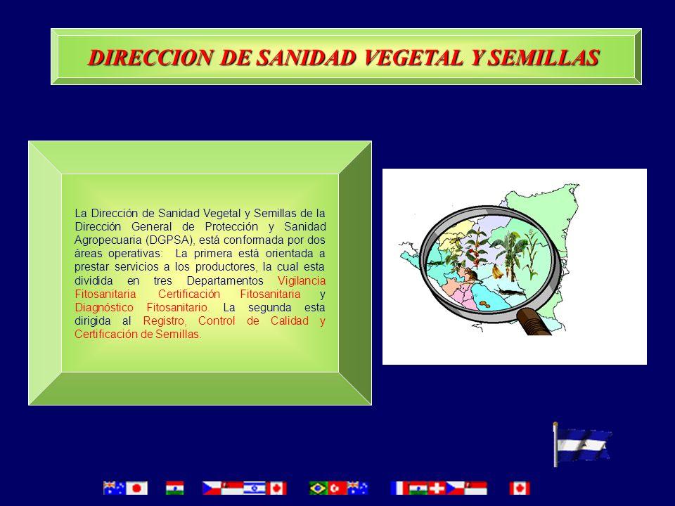 DIRECCION DE SANIDAD VEGETAL Y SEMILLAS