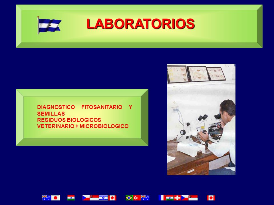 LABORATORIOS DIAGNOSTICO FITOSANITARIO Y SEMILLAS RESIDUOS BIOLOGICOS