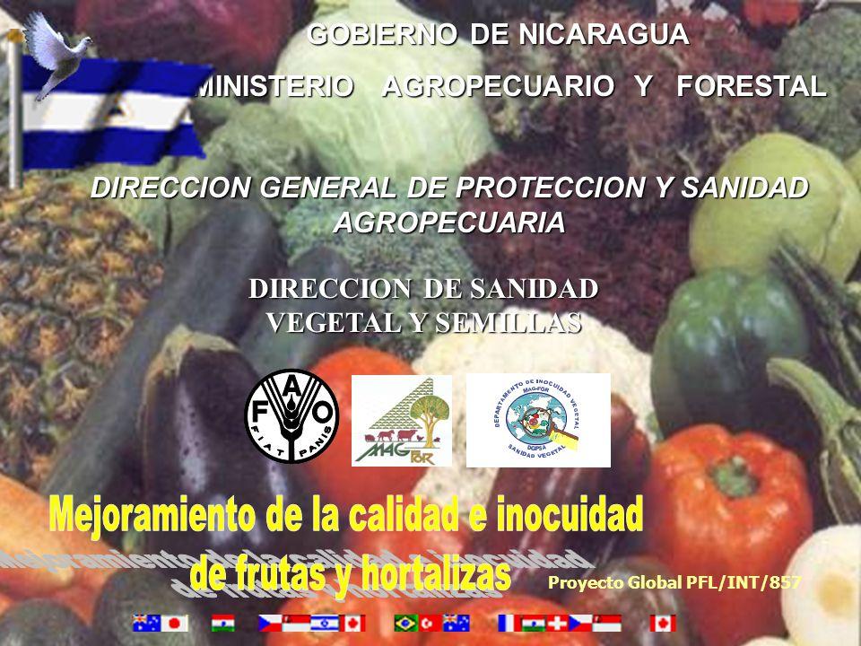 Mejoramiento de la calidad e inocuidad de frutas y hortalizas