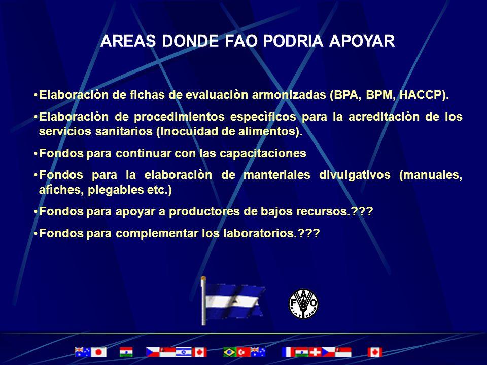 AREAS DONDE FAO PODRIA APOYAR