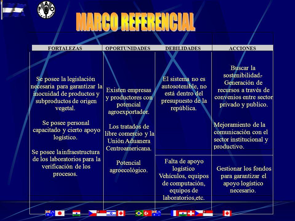 MARCO REFERENCIAL Buscar la sostenibilidad. - Generación de