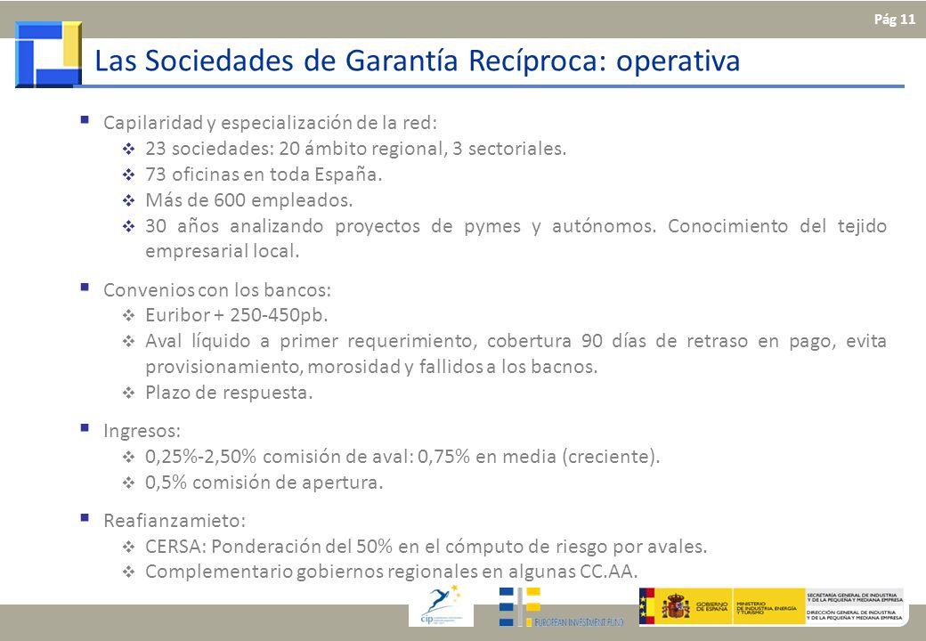 Las Sociedades de Garantía Recíproca: operativa