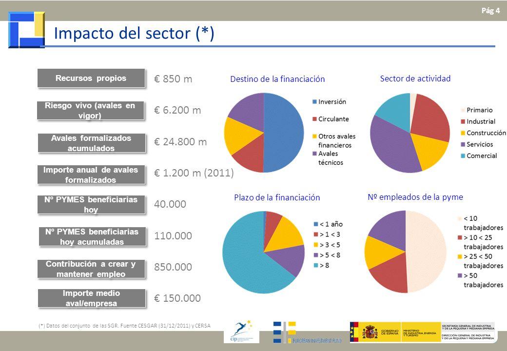 Impacto del sector (*) € 850 m € 6.200 m € 24.800 m € 1.200 m (2011)