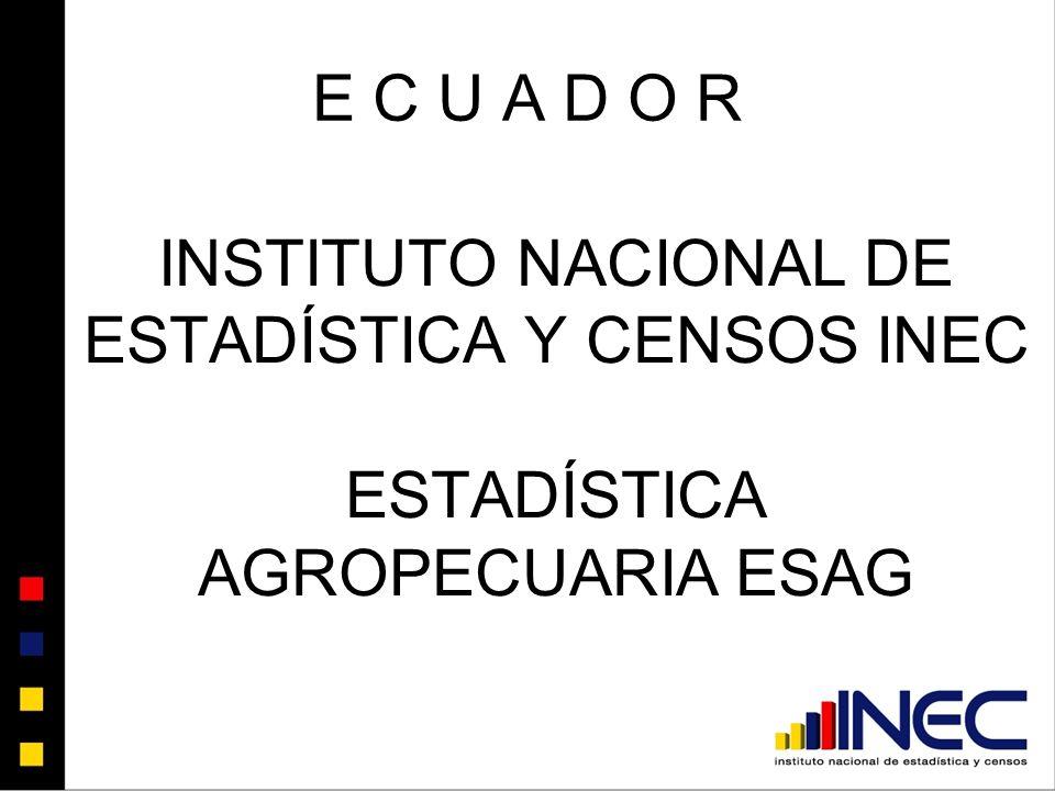 INSTITUTO NACIONAL DE ESTADÍSTICA Y CENSOS INEC