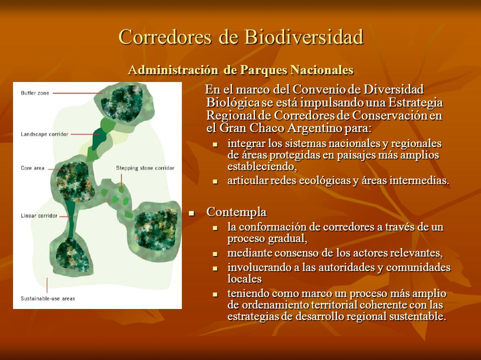 Corredores de Biodiversidad Administración de Parques Nacionales