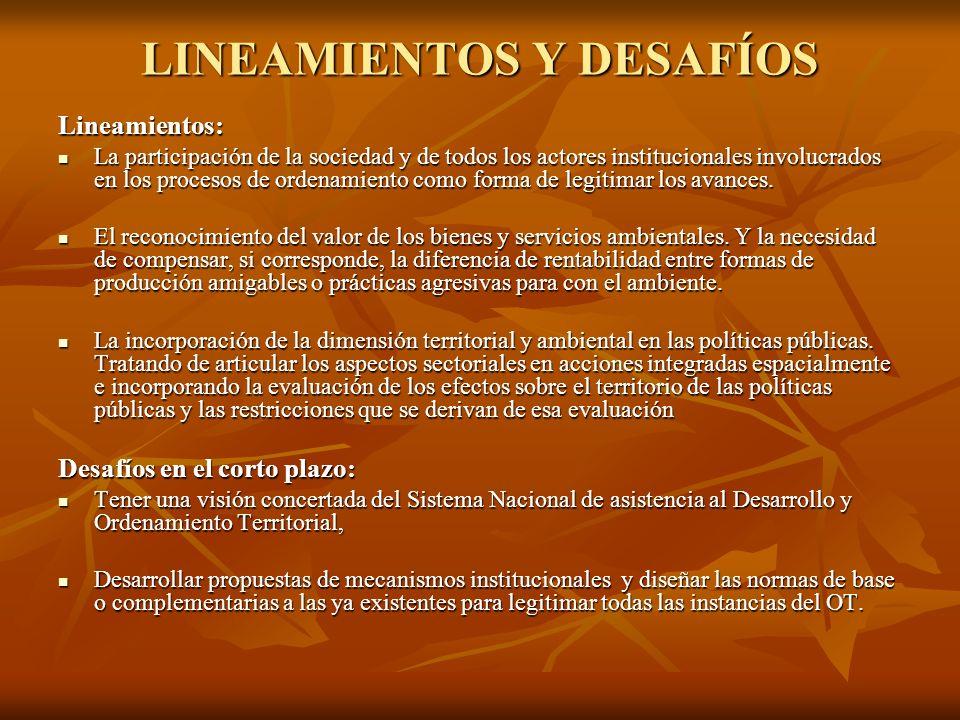 LINEAMIENTOS Y DESAFÍOS