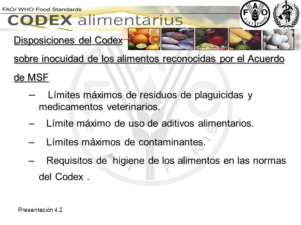 Disposiciones del Codex