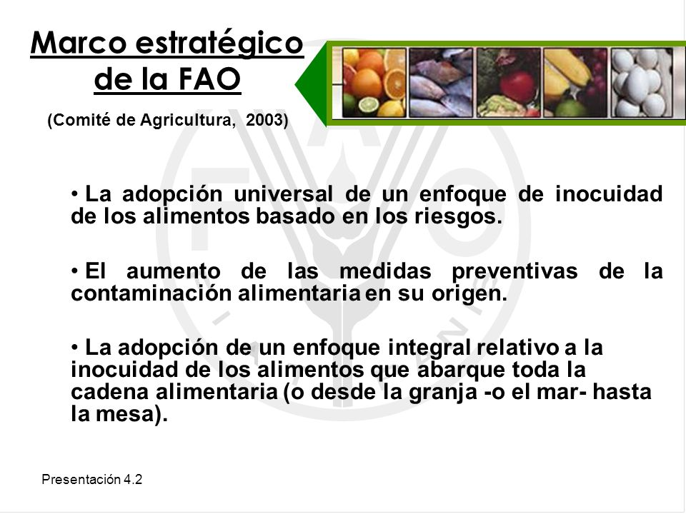 Marco estratégico de la FAO