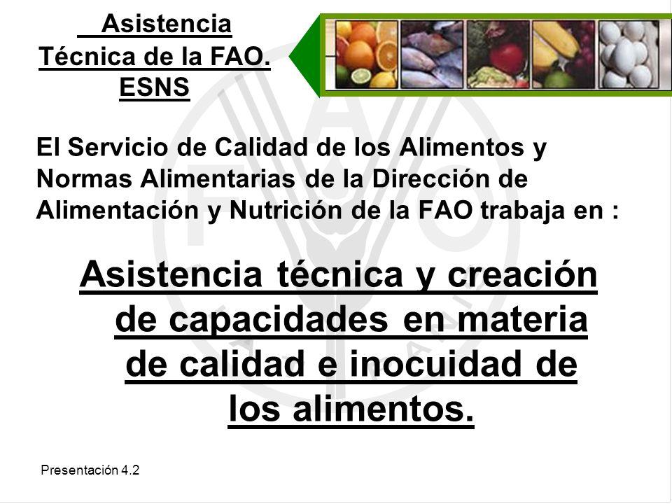 Asistencia Técnica de la FAO. ESNS