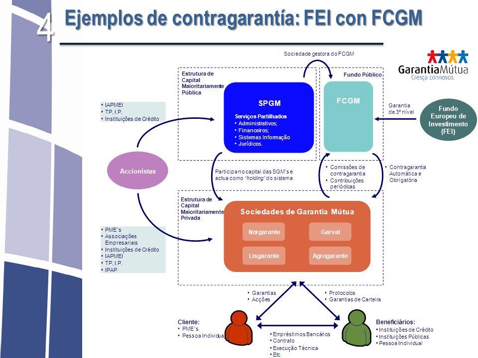 4 Ejemplos de contragarantía: FEI con FCGM 32