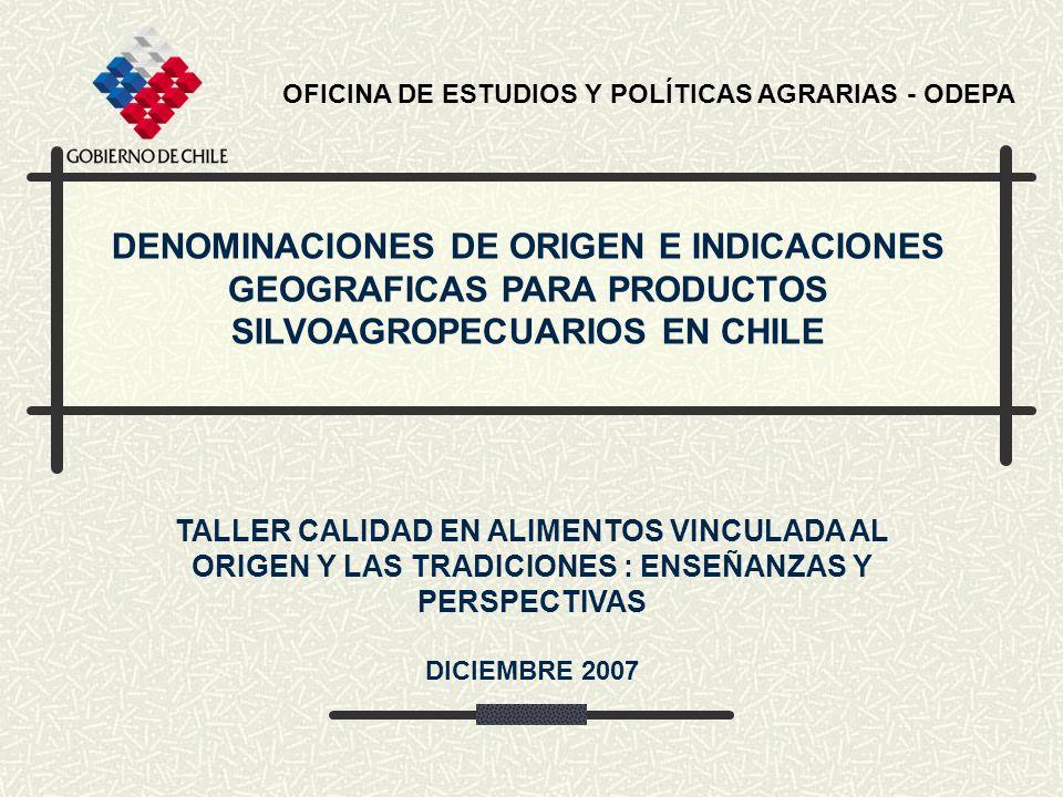 OFICINA DE ESTUDIOS Y POLÍTICAS AGRARIAS - ODEPA