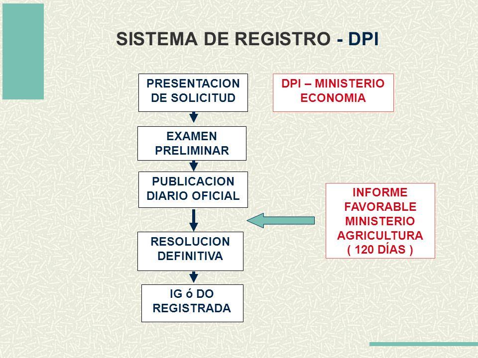 SISTEMA DE REGISTRO - DPI