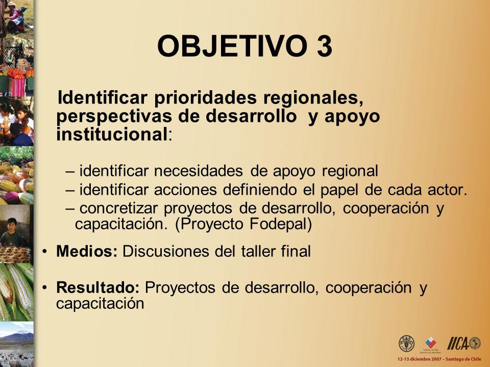 OBJETIVO 3 Identificar prioridades regionales, perspectivas de desarrollo y apoyo institucional: identificar necesidades de apoyo regional.