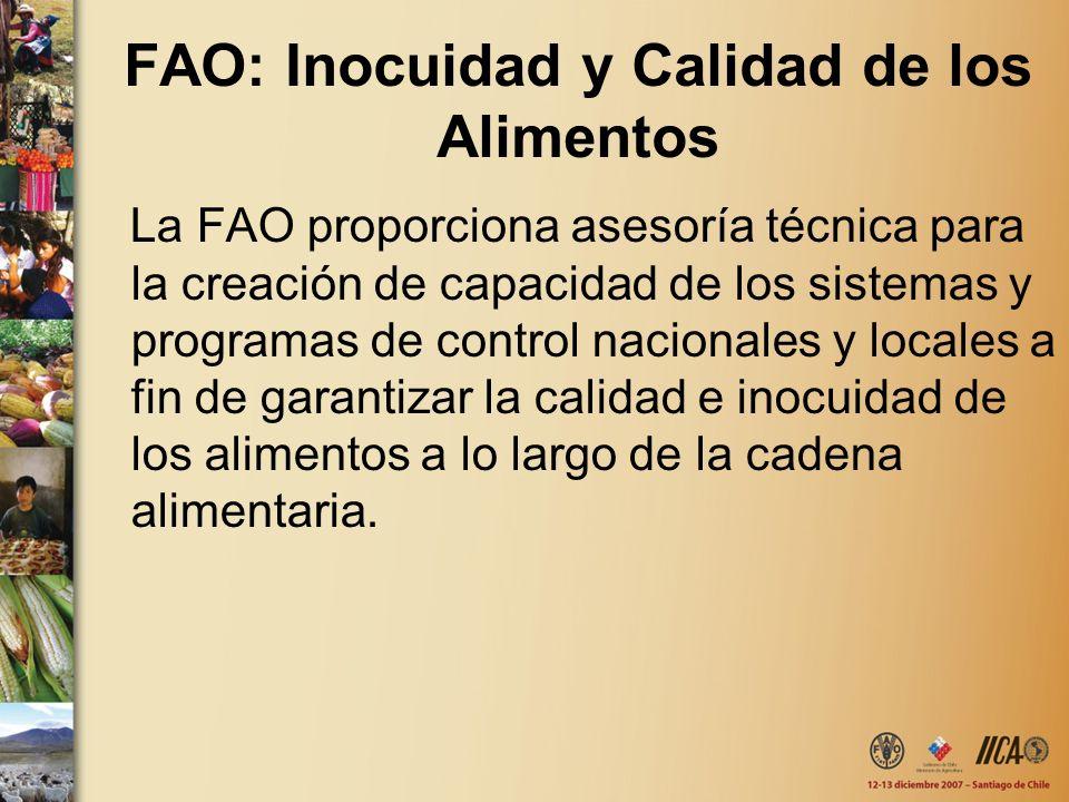 FAO: Inocuidad y Calidad de los Alimentos