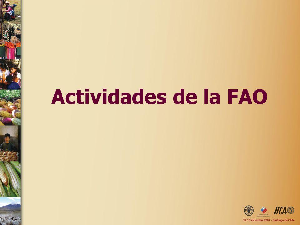 Actividades de la FAO