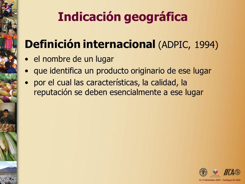 Indicación geográfica