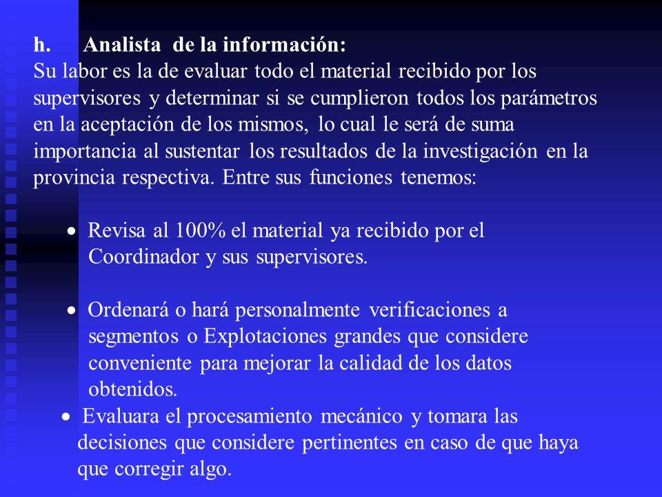 h. Analista de la información: