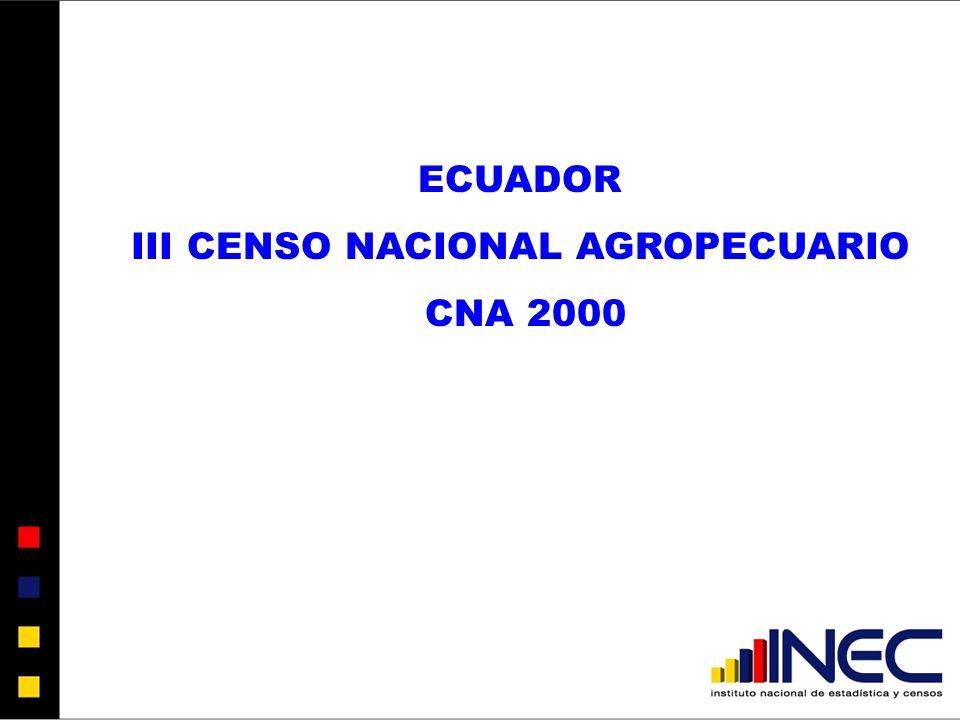 III CENSO NACIONAL AGROPECUARIO