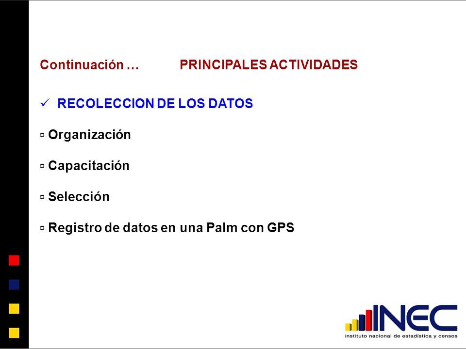 Continuación … PRINCIPALES ACTIVIDADES