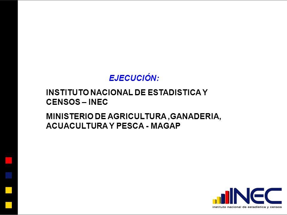 EJECUCIÓN: INSTITUTO NACIONAL DE ESTADISTICA Y CENSOS – INEC.