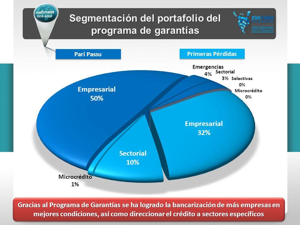 Segmentación del portafolio del programa de garantías