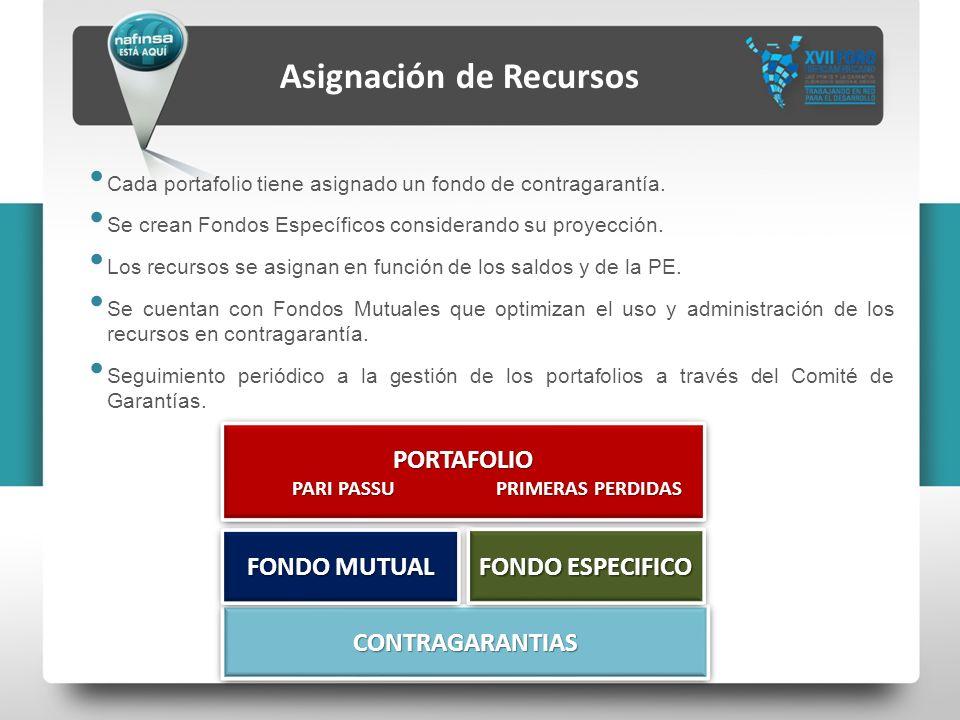 Asignación de Recursos PARI PASSU PRIMERAS PERDIDAS