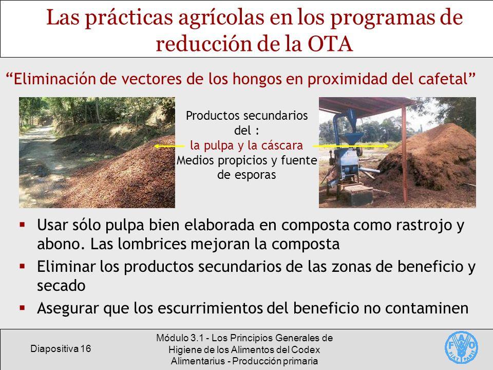 Las prácticas agrícolas en los programas de reducción de la OTA