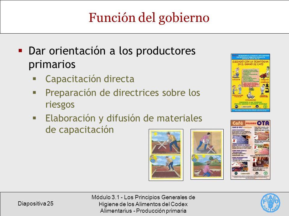 Función del gobierno Dar orientación a los productores primarios