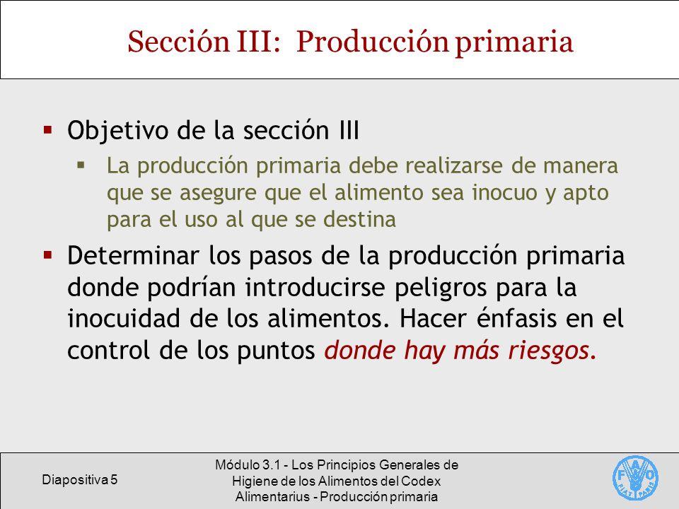 Sección III: Producción primaria