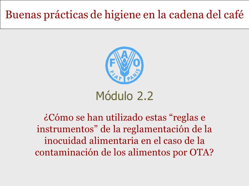 Módulo 2.2