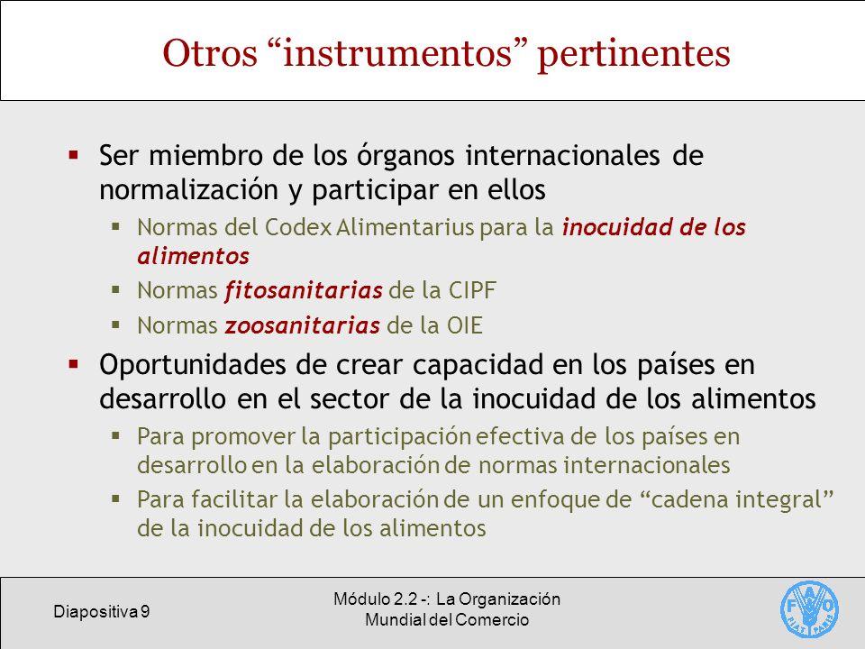 Otros instrumentos pertinentes