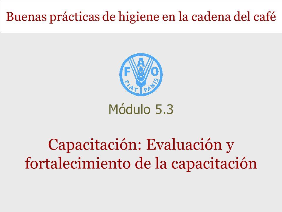 Capacitación: Evaluación y fortalecimiento de la capacitación