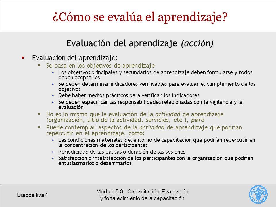 ¿Cómo se evalúa el aprendizaje