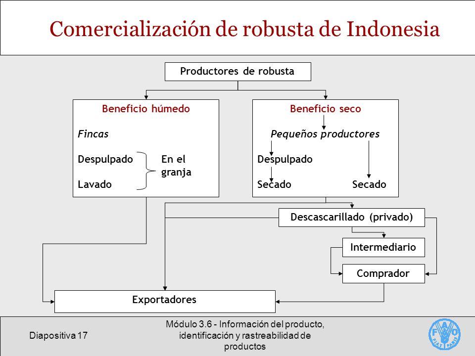 Comercialización de robusta de Indonesia
