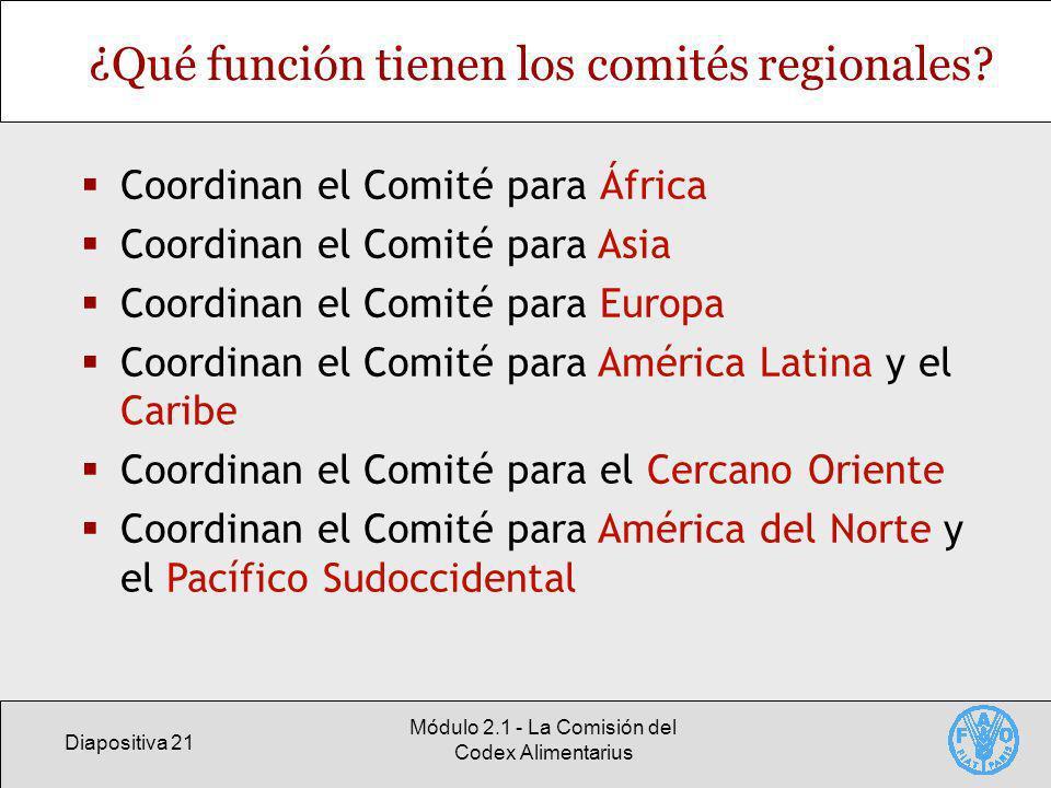 ¿Qué función tienen los comités regionales
