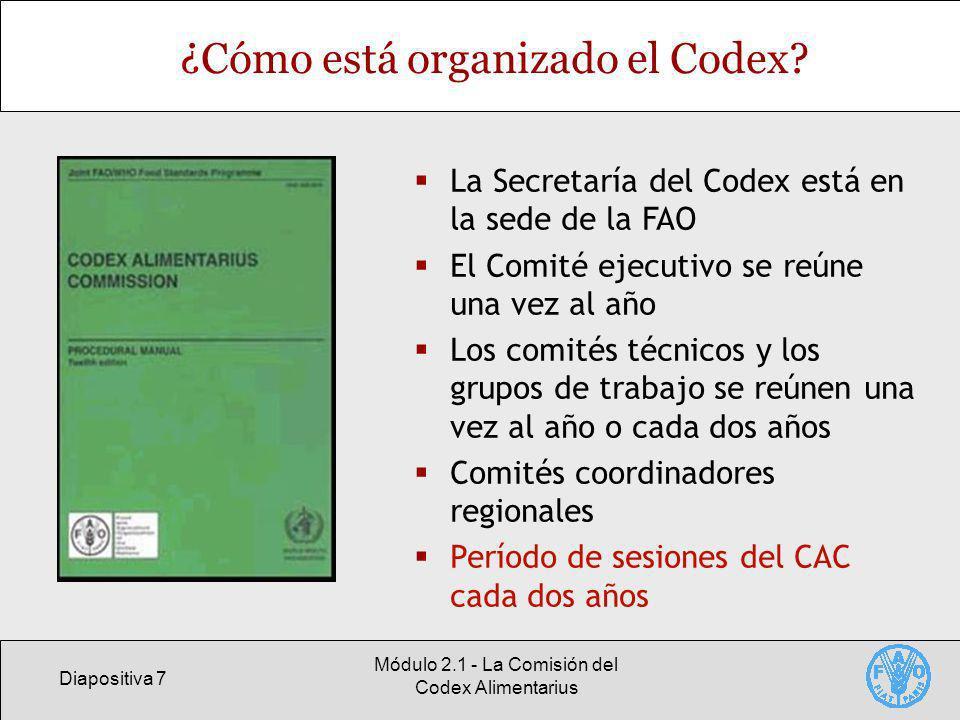 ¿Cómo está organizado el Codex