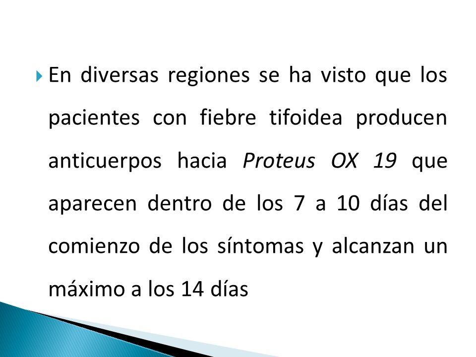 En diversas regiones se ha visto que los pacientes con fiebre tifoidea producen anticuerpos hacia Proteus OX 19 que aparecen dentro de los 7 a 10 días del comienzo de los síntomas y alcanzan un máximo a los 14 días