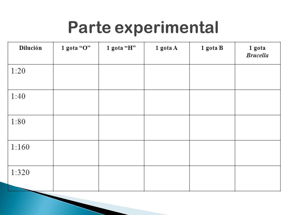 Parte experimental 1:20 1:40 1:80 1:160 1:320 Dilución 1 gota O