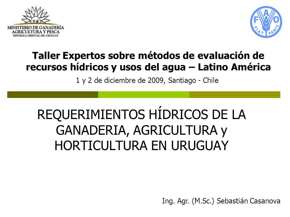 Taller Expertos sobre métodos de evaluación de recursos hídricos y usos del agua – Latino América