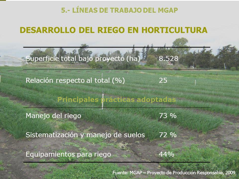 DESARROLLO DEL RIEGO EN HORTICULTURA
