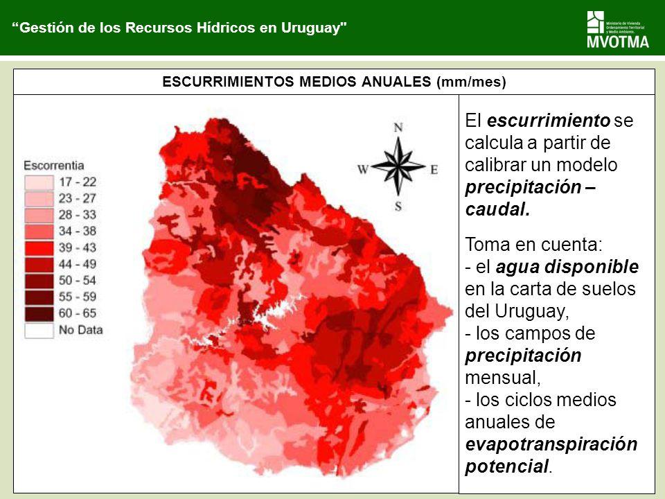 ESCURRIMIENTOS MEDIOS ANUALES (mm/mes)