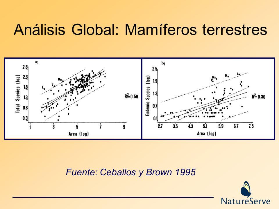 Análisis Global: Mamíferos terrestres