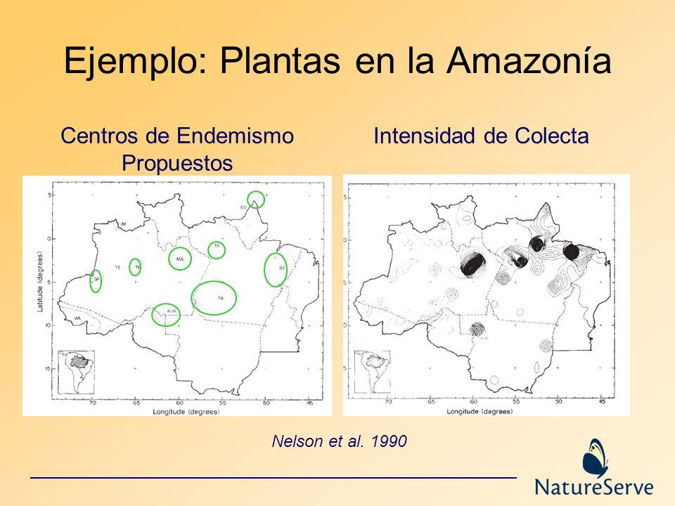 Ejemplo: Plantas en la Amazonía