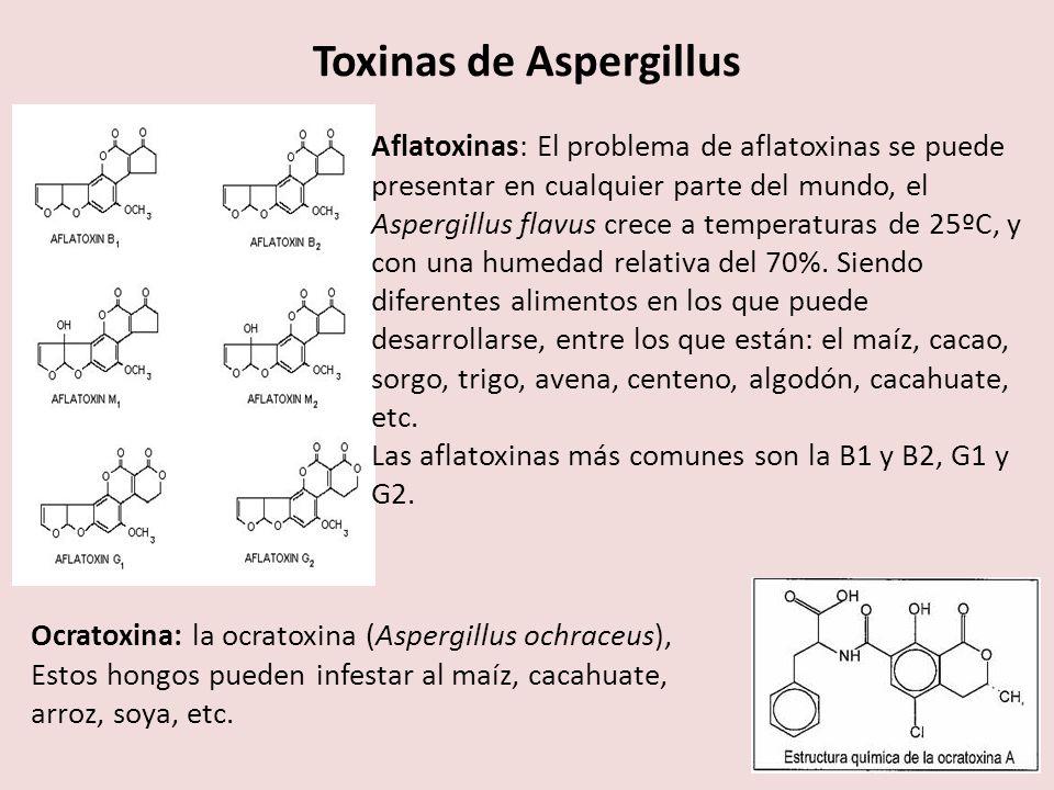 Toxinas de Aspergillus