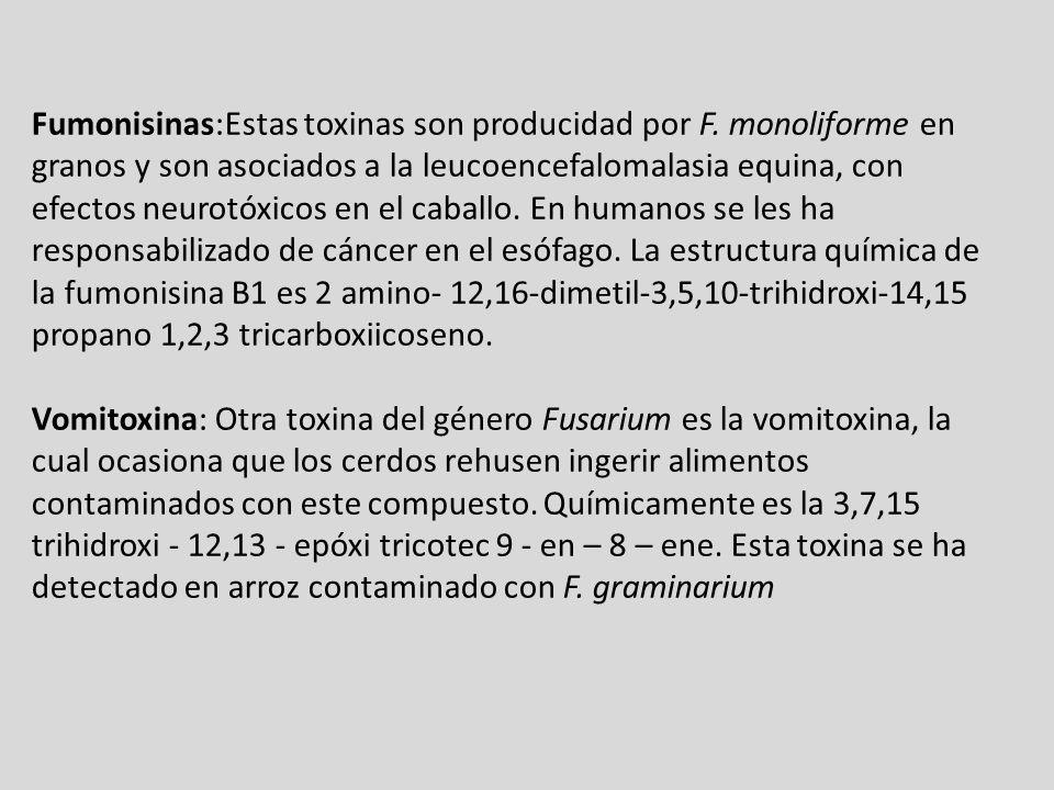 Fumonisinas:Estas toxinas son producidad por F